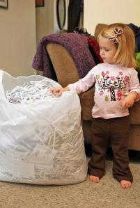 The Shred Pile has grown as big as Charlotte!